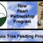 Joshua Tree Feeding Program Launches New Pearl Partnership